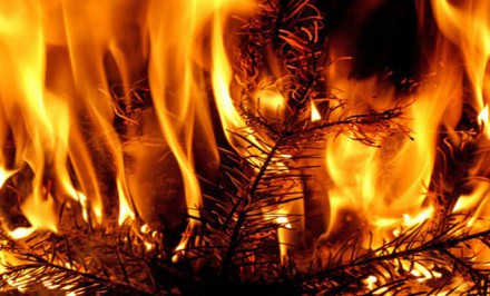 brand-weihnachten-1